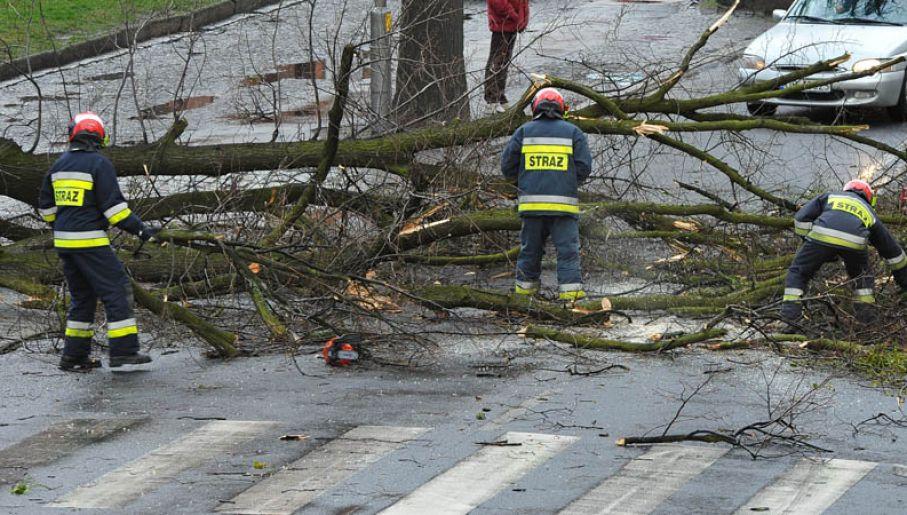 Strażacy w Brzegu mieli we wtorek bardzo dużo pracy (fot.Twoje Info/Krzysztof)