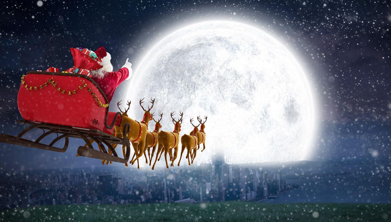 W zaprzęgu Świętego Mikołaja znajduje się dziewięć reniferów (fot. Shutterstock/vectorfusionart)