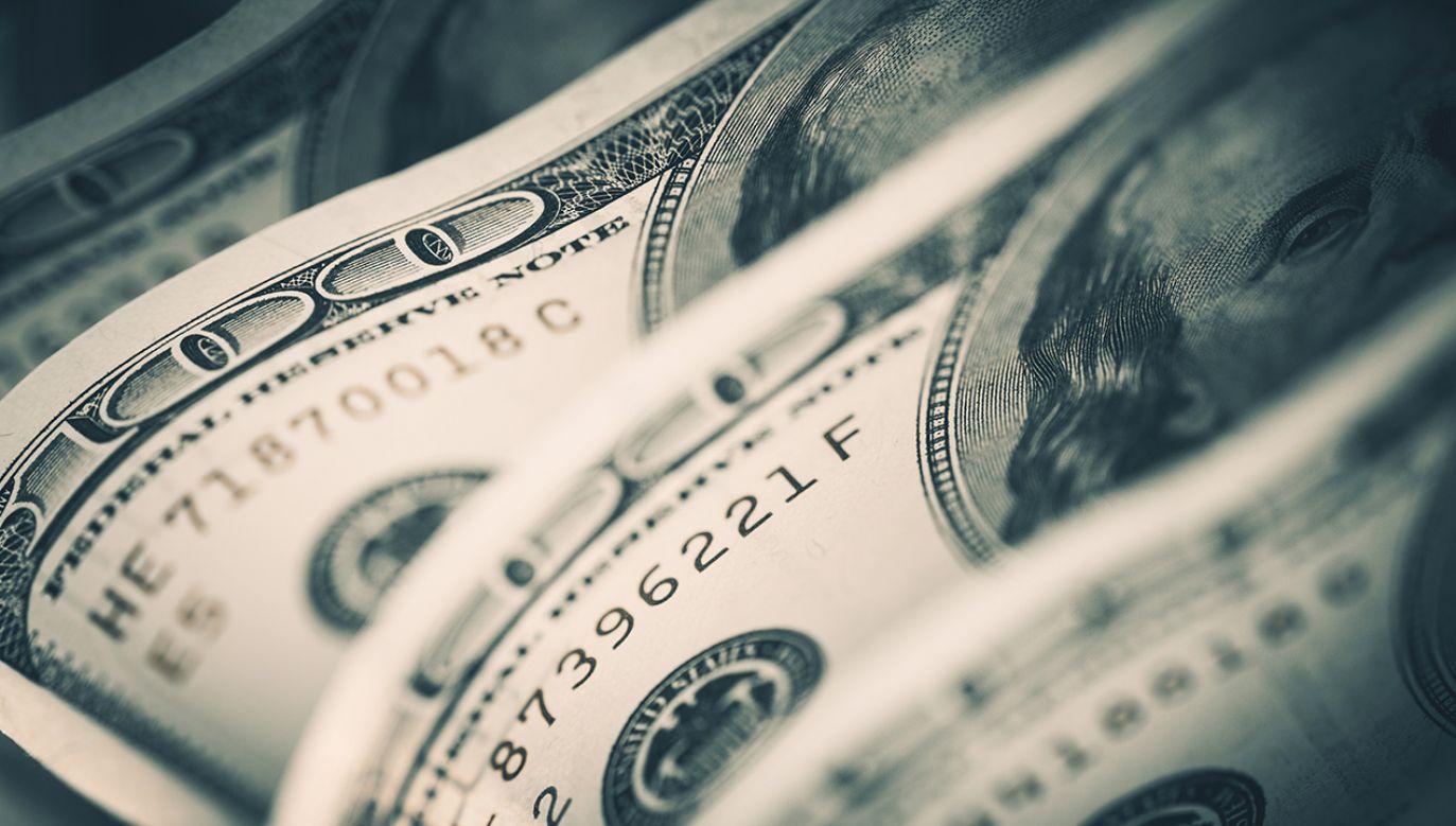 W ramach zaoferowanej światowej gospodarce sumy, 344 mld dolarów ma pochodzić z Chin (fot. Shutterstock/welcomia)