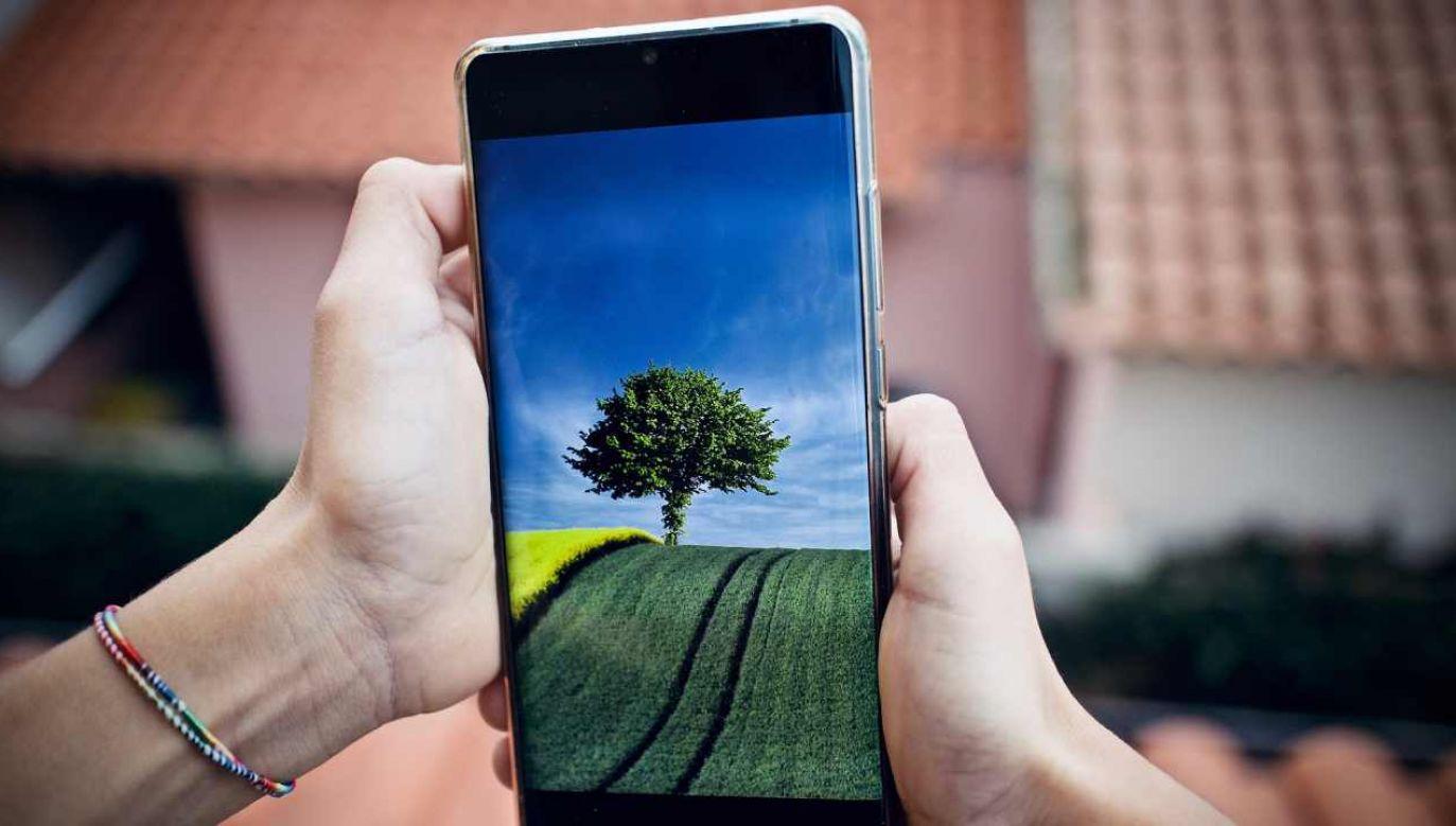 Apki dostępne są dla systemów Android oraz iOS (fot. Pixabay/sweetlouise)