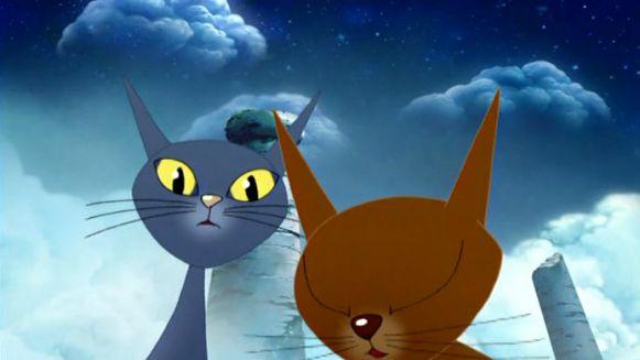 odc-9-wyspa-kotow