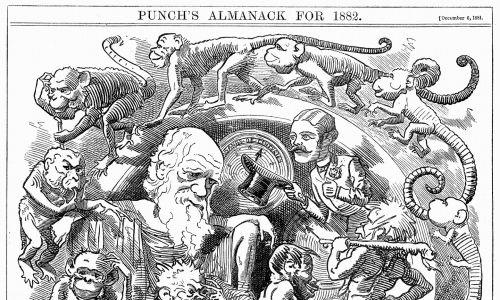 """""""Człowiek jest tylko robakiem"""". Kreskówka z Punch, Londyn, 6 grudnia 1881 – roku, w którym Darwin opublikował """"The Formation of Vegetable Mould through the action of Worms"""", ukazującą ewolucję od robaka do człowieka. Fot. z Universal History Archive / Getty Images"""