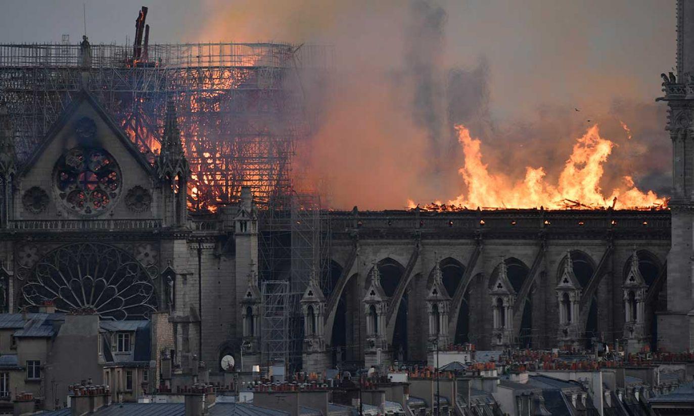 (fot. PAP/EPA/JULIEN DE ROSA)