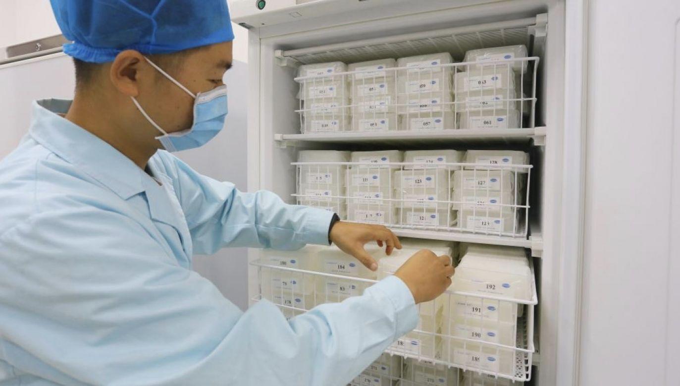 Przez pewien czas bakteria była kandydatką na broń biologiczną (fot. Gao Zhan/China News Service via Getty Images)