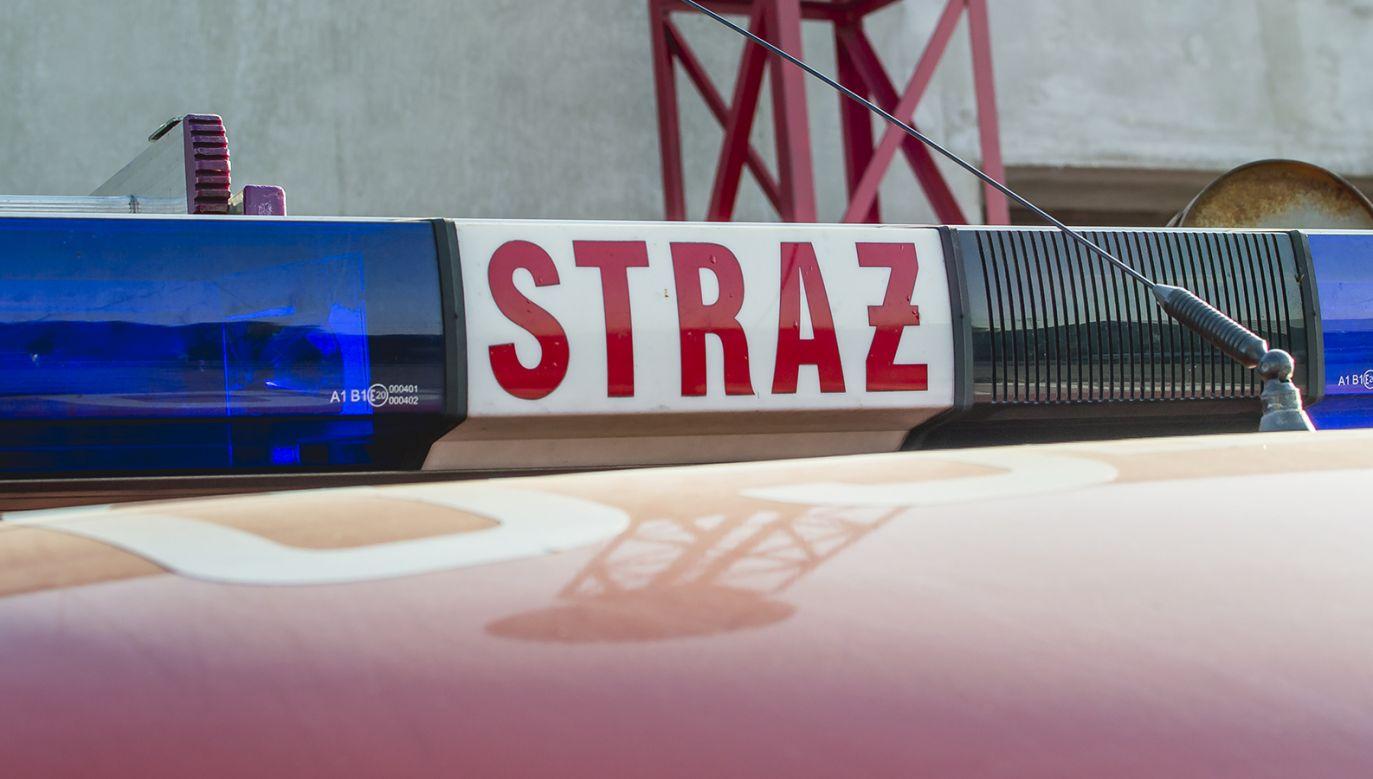 W akcji gasniczej uczestniczyło ok. 70 strażaków (fot. tvp.info/Paweł Chrabąszcz)