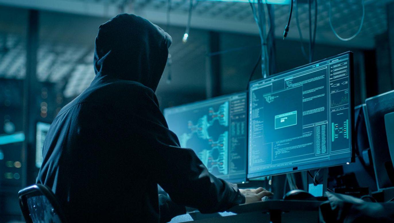 Celem ataków były firmy z Korei Płd., USA i Wlk. Brytanii (fot. Shutterstock/Gorodenkoff)