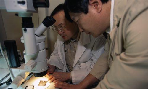 Bracia Alan Chow i Vincent Chow opracowali mikroczip zawierający 3500 fotodiod, które wykrywają światło i przekształcają je w impulsy elektryczne, które stymulują zdrowe komórki zwojowe siatkówki. Sztuczna siatkówka krzemowa (ASR) nie wymaga urządzeń noszonych zewnętrznie. Fot.  Frederic Neema/Sygma via Getty Images