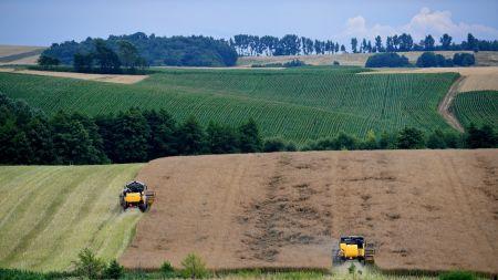 Do 17 czerwca rolnicy mogą wnioskować o dopłaty bezpośrednie (fot. PAP/D. Delamnowicz)