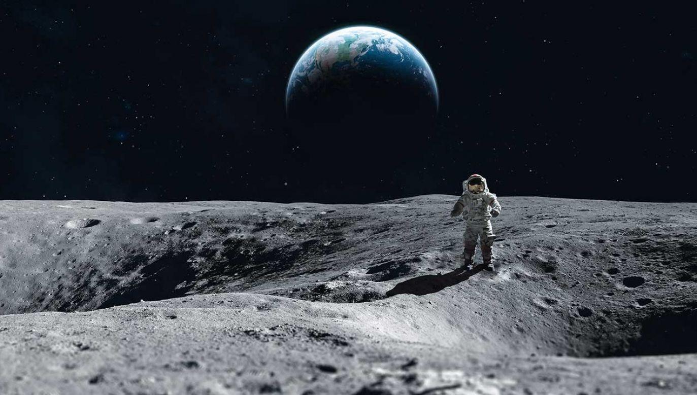 NASA planuje ekspedycję na księżyc (fot. Shutterstock/Dima Zel)