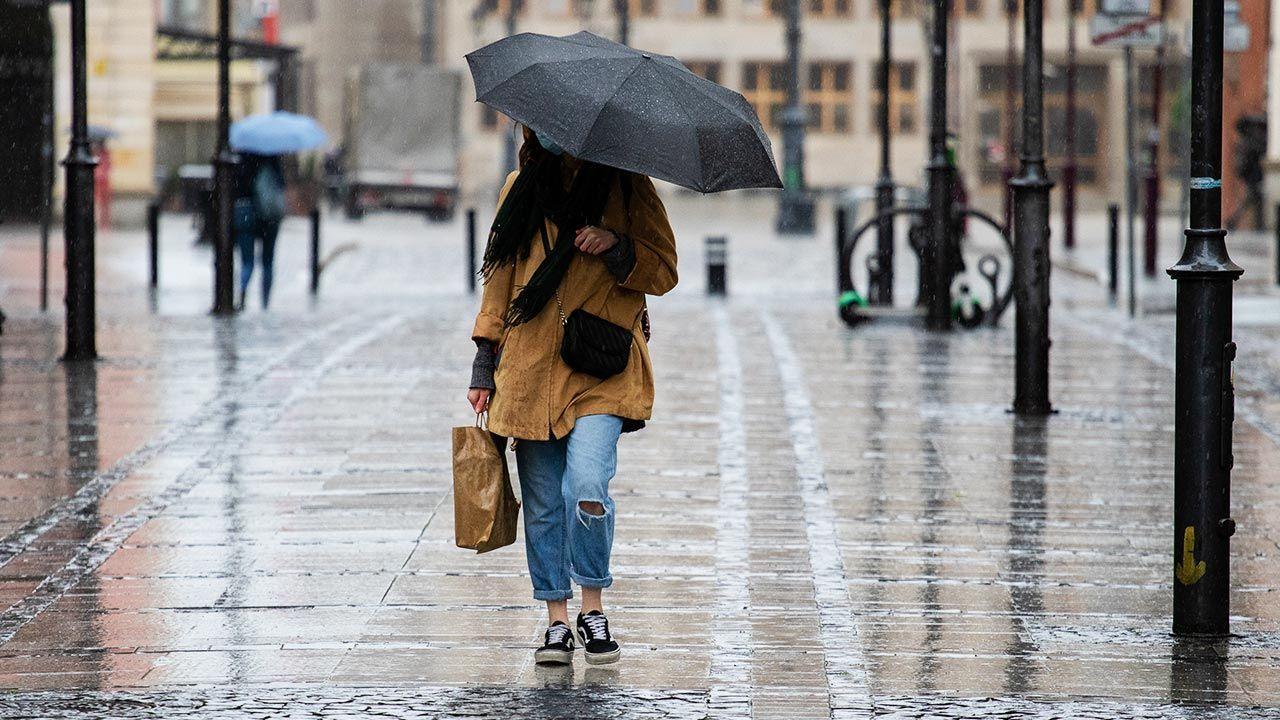 IMGW opublikował ostrzeżenia przed intensywnymi opadami deszczu (fot. Shutterstock/LIDERO)