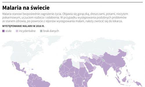 Malaria na świecie. Grafika: Maria Samczuk , Maciej Zieliński – PAP, sierpień 2017