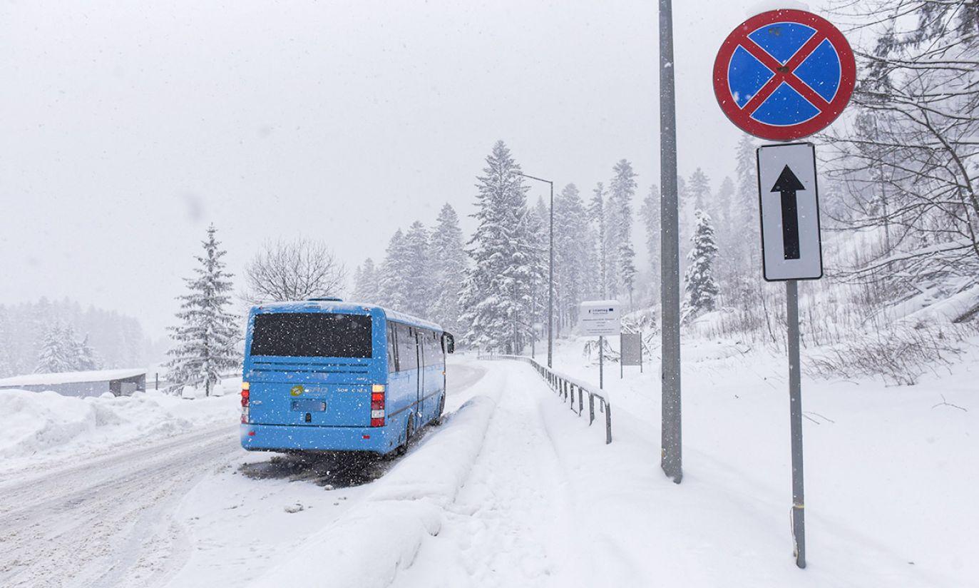 (fot. PAP/Jan Niedziałek)