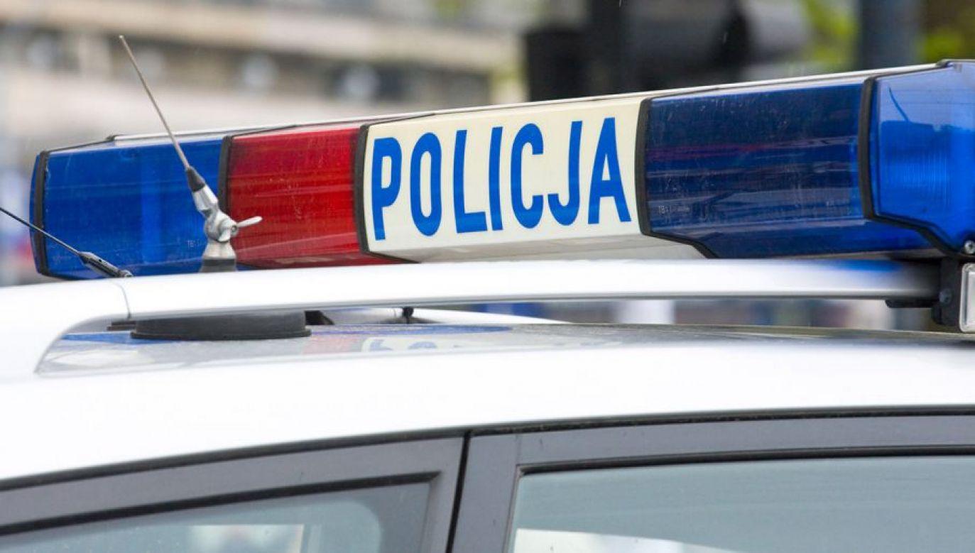 Kierowca został zatrzymany i osadzony w policyjnym areszcie (fot. Shutterstock/Dziewul)