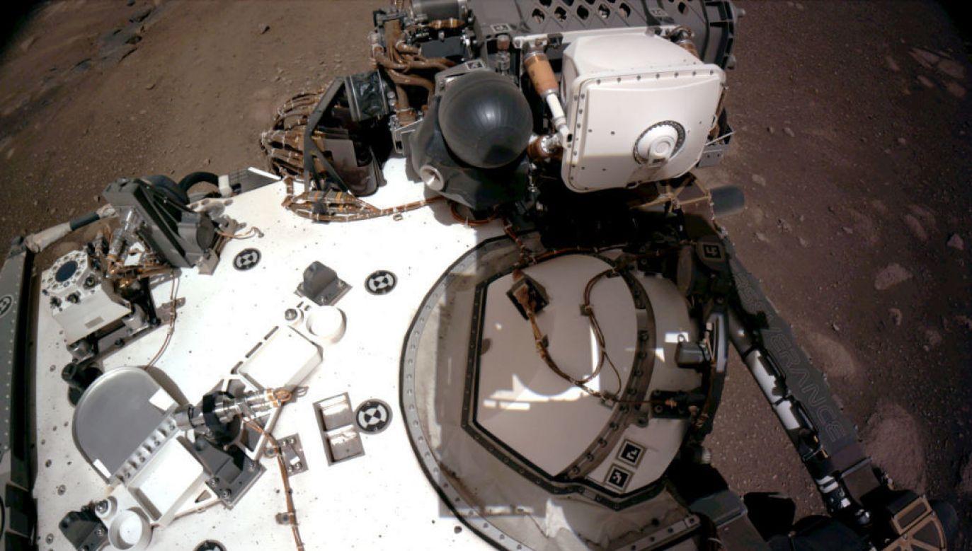 Łazik Perseverance na Marsie (fot. NASA via Getty Images)