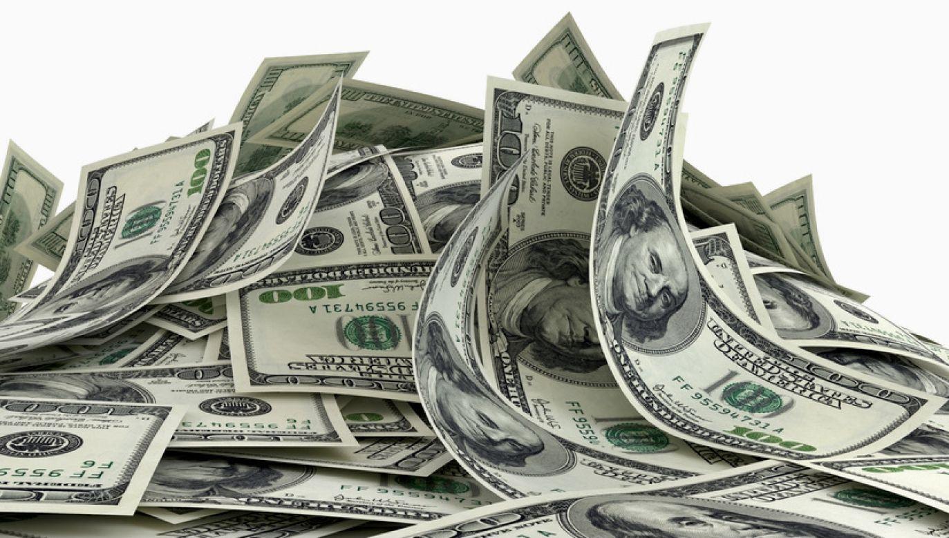 Omyłkowo firma przesłała jej milion dolarów, nie chciała oddać (fot. Shutterstock/urfin)
