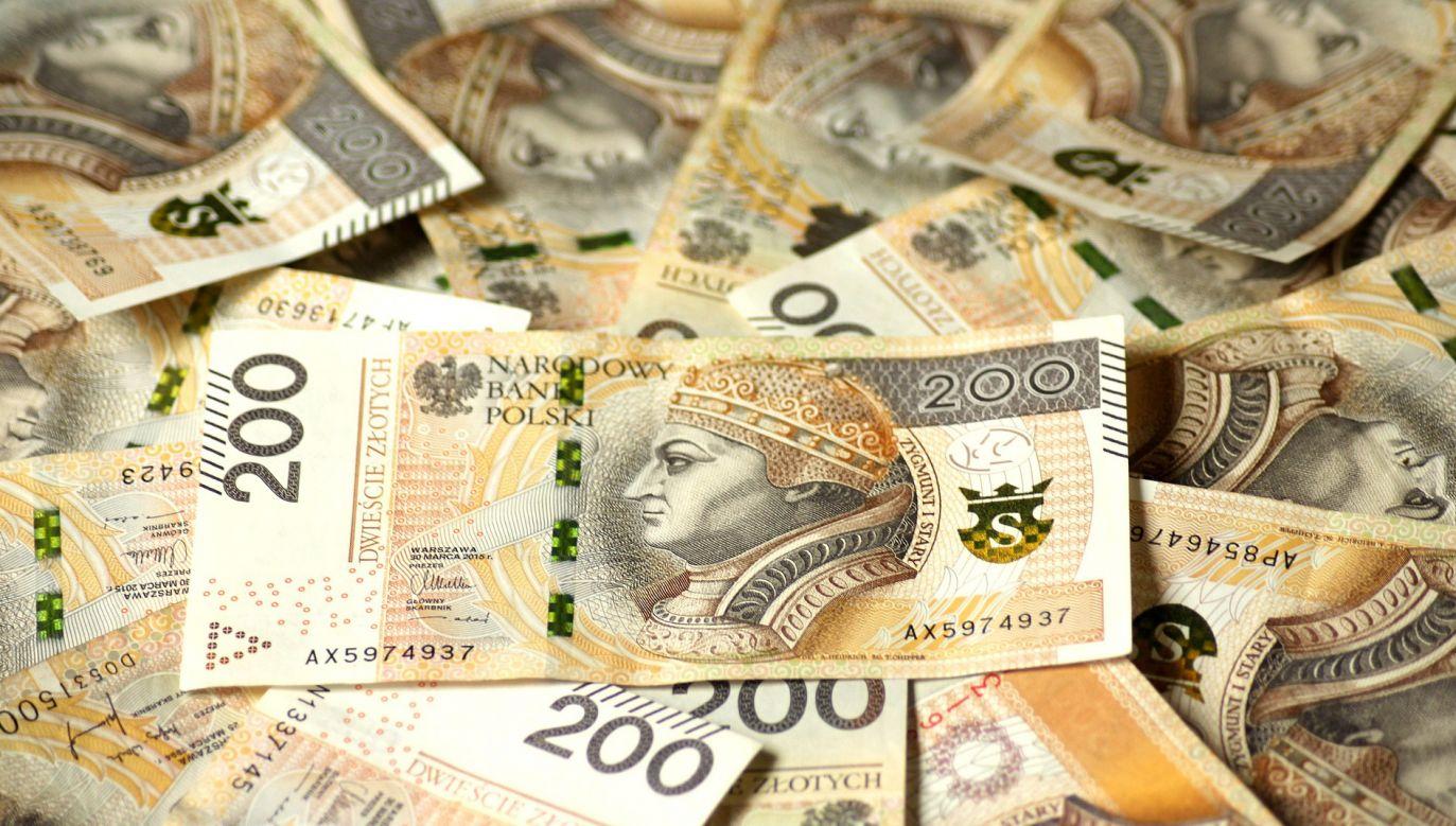 Wzrost długu na świecie zaliczono do kluczowych tematów w tegorocznym, styczniowym raporcie Banku Światowego (fot. pixabay.com/_Alicja_)