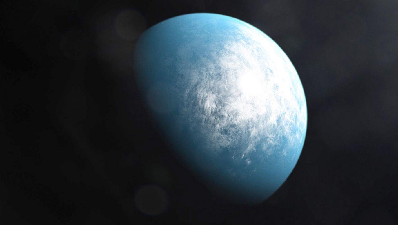 TOI 700 d ma wielkość prawie taką samą, jak Ziemia i prawdopodobnie skalistą budowę (fot. NASA's Goddard Space Flight Center)