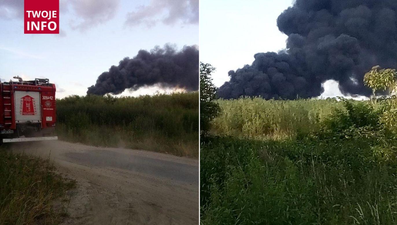 W walce z pożarem wzięły udział także samoloty gaśnicze (fot. Twoje info)